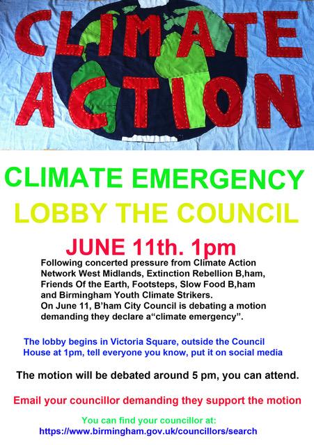 Lobby council flier (3)